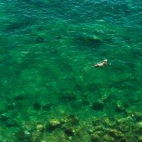 Одиночное плавание... :: Вадим *
