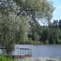 Раифское озеро ранним утром... :: марина ковшова