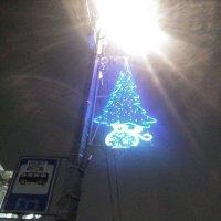 Елочка из лампочек на фонаре! :: Светлана Калмыкова