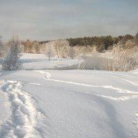 морозное утро №3 :: Владимир Носов