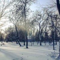 Зима :: Вячеслав Баширов