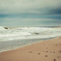Балтийское море :: Андрей С.