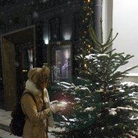 Ася и предновогодние чудеса) :: Татьяна Тимофеева