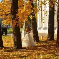 Невеста посреди золотого листопада... :: Sergey Gordoff