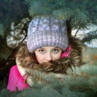 ...зимняя... :: Светлана Держицкая (Soboleva)