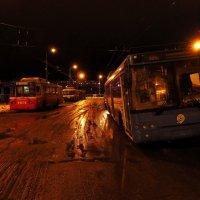 Мы ждем троллейбусов, но они не едут :: Андрей Лукьянов
