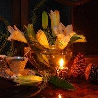 Новогодние лилии. :: Лара Гамильтон