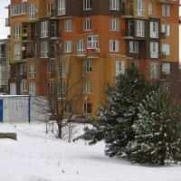 Снежно и морозно :: Татьяна Смоляниченко