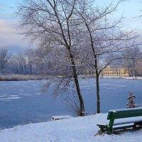 В парке зимой :: Маргарита Батырева