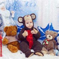 Фотосессия в костюме мишки :: марина алексеева