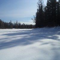Зима :: Надежда Малинкина
