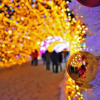 Новогодние огни :: Алексей Никитин