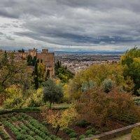 Spain 2016 Granada La Alhambra 6 :: Arturs Ancans