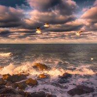 Морской пейзаж :: Виктор Мороз