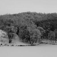 Зимний лес на берегу замерзшего озера. :: Ильгам Кильдеев