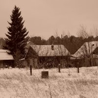 Зима в деревне :: Евгений Карский