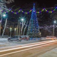 Новогодняя ёлочка. :: Виктор Евстратов