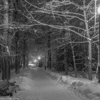 Вечерняя аллея. :: Виктор Евстратов