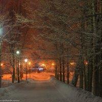 В зимнем парке. :: Виктор Евстратов
