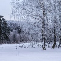 Моно-но аваре :: Михаил Кондратенко