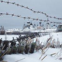 Дождь в декабре :: Александр Бобрецов