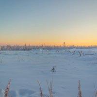 Зима на Печоре :: Юрий Кучевасов