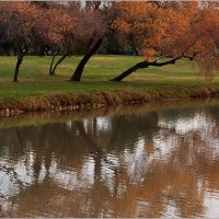 В парке осень. :: Lmark