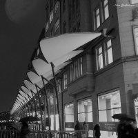 Дождливый декабрьский вечер :: Nina Yudicheva