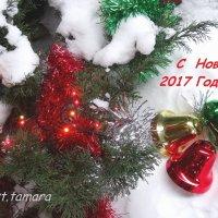 Новогоднее поздравление... :: Тамара (st.tamara)