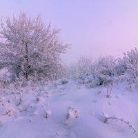 Зима :: Анатолий