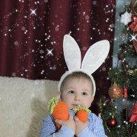 боже зима, а у меня всего две морковки :: Ольга Русакова