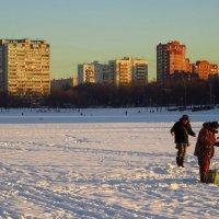 Пуще неволи :: Андрей Лукьянов
