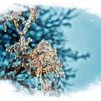 Ледяной Дождь :: Alexander Dementev