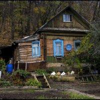 Хорошо в деревне :: Алексей Патлах