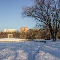 В парке :: Elena Ignatova