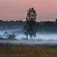 Туман на рассвете :: Олег Резенов