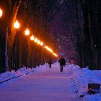 Зимний вечер :: Михаил Танин