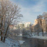 Зимний пригород 9 :: Виталий