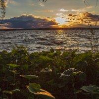 Апрельский вечер на Нововоронежском водохранилище :: Юрий Клишин