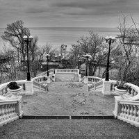 Лестница в Аркадии. :: Елена Данько
