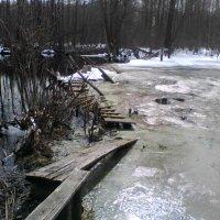 Мост между зимой и весной :: Виктор Мухин