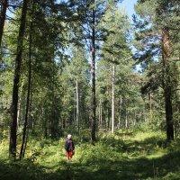 Западная Сибирь :: Наталия