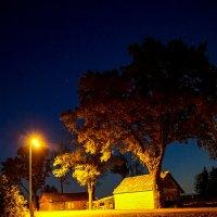 Ночь, осень 2 :: Genych