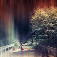в Японском лесу :: Slava Hamamoto