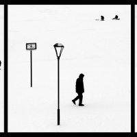 Жизнь на снегу :: Григорий