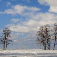 Зимним днём :: Виталий
