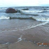 Морской ейзаж :: Svetlana Lyaxovich