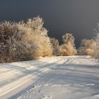 Куда дорога приведёт... :: Александр Попов
