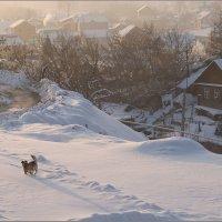 Морозное утро :: Алексей Патлах