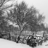 Снежный февраль :: Dr. Olver  ( ОлегЪ )